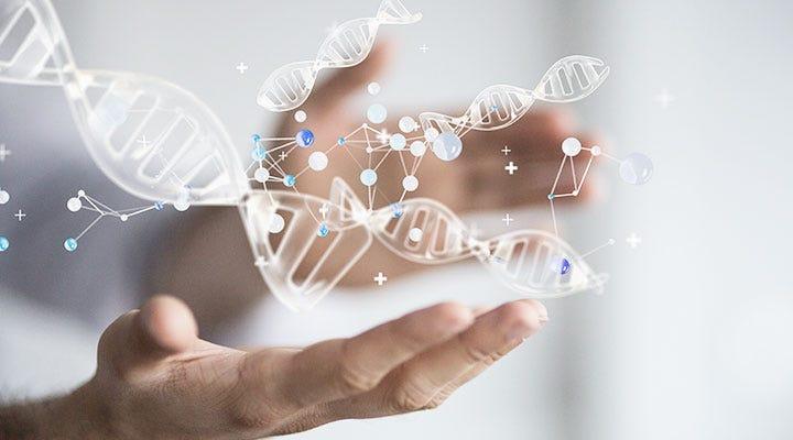 Service First DNA
